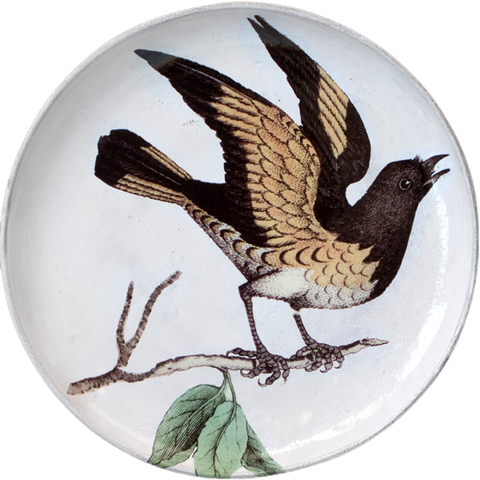 American Red Start (Facing Right) Round Platter