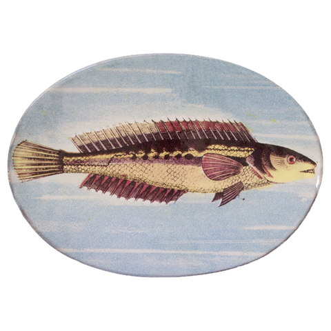 Painted Fish H Oval Plate