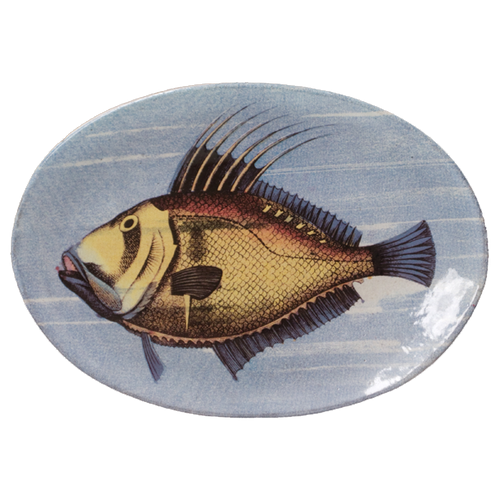 Painted Fish A Oval Plate