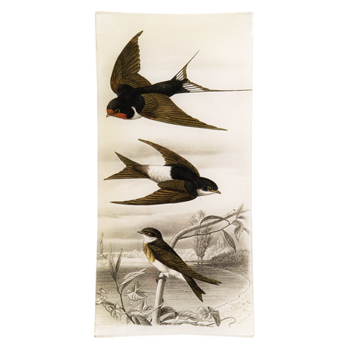 Swallows (3 Birds)