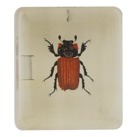 Insect e (Red)