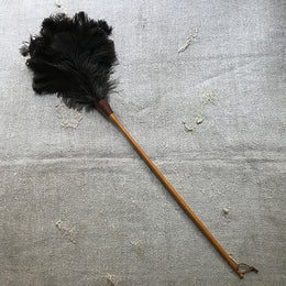 Large Feather Duster #2