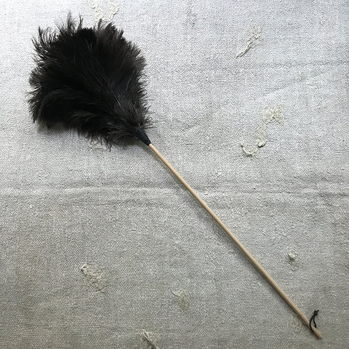 Large Feather Duster #3
