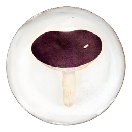 Agaric Emetique Saucer