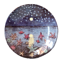 Starfish & Starry Night Small Plate