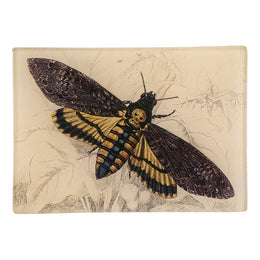 Death Head Moth 102