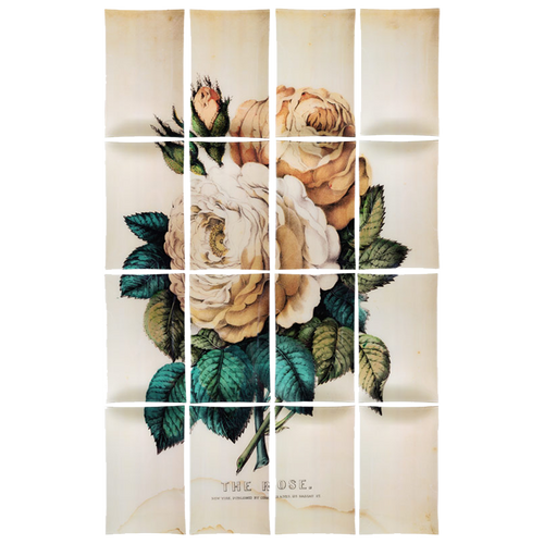 Rose (16 Pieces)