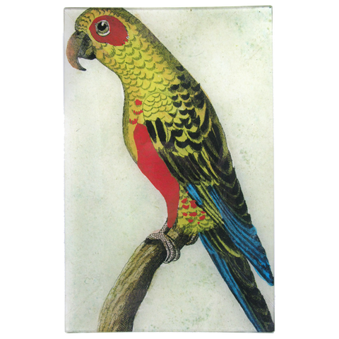 Parrot #6 - Yellow