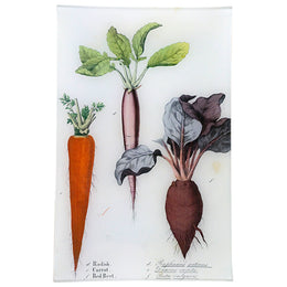 Radish, Carrot, Beet (Kitchen Vegetables)