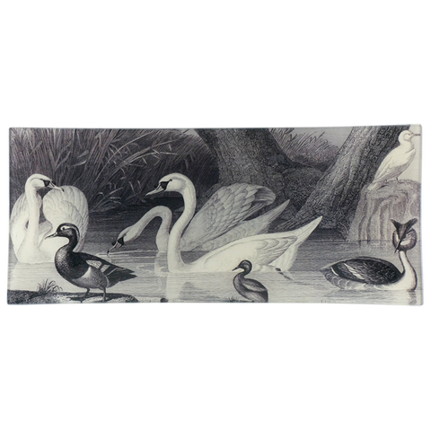 Swan Lake (Drawn)