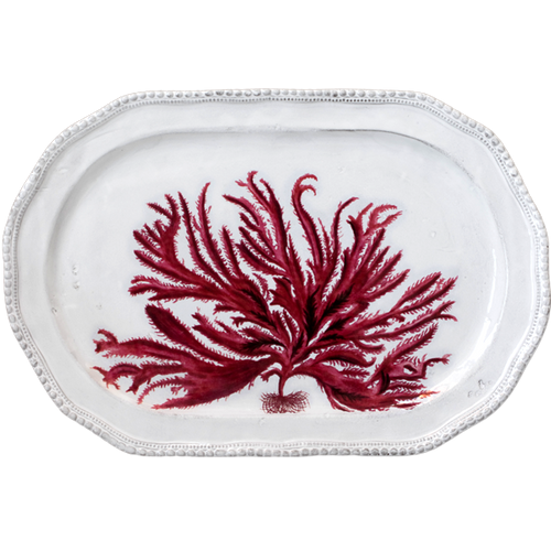 Red Seaweed Platter