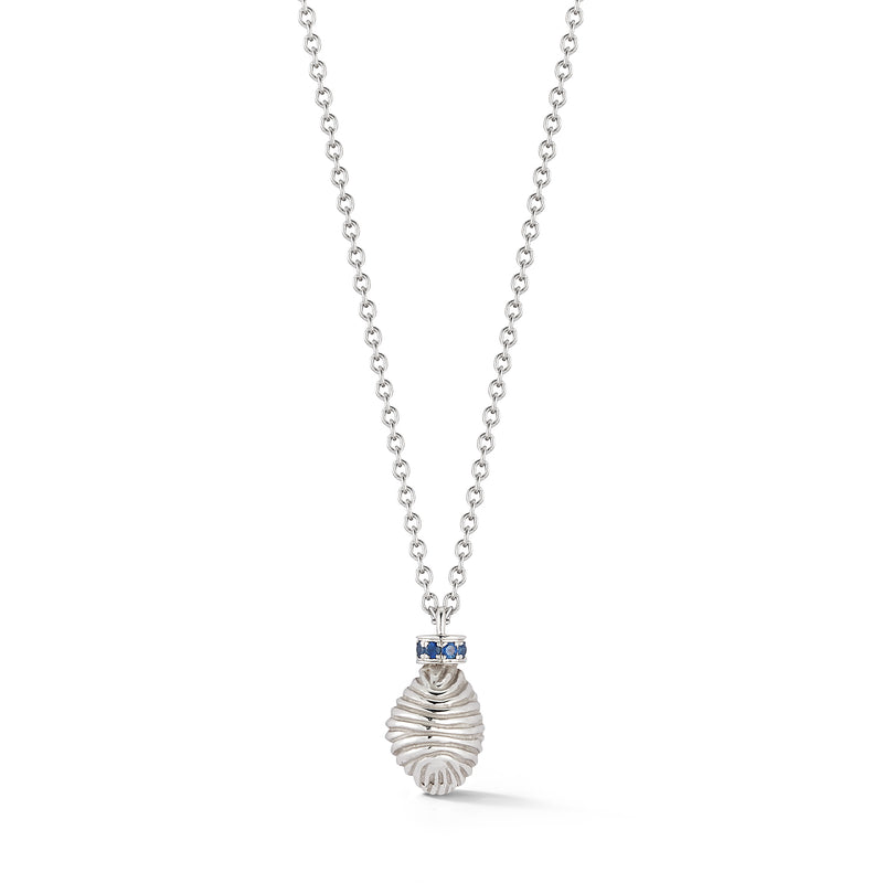Thread and Shell Necklace - Sapphire