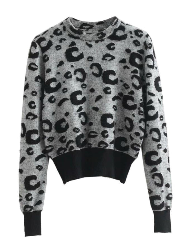 'Pamm' Animal Print Sweater