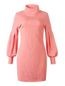 'Elzira' Turtleneck Knitted Dress (3 Colors)