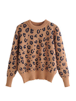 'Iris' Crewneck Leopard Printed Sweater (3 Colors)