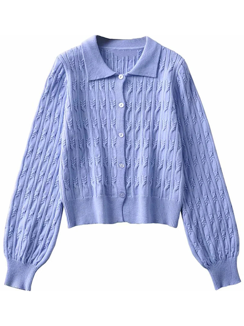 'Elly' Polo Button Down Sweater (2 Colors)