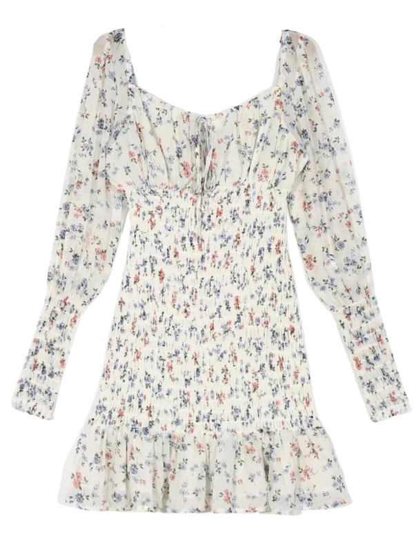 'Antonia' Floral Printed Ruched Long Sleeves Mini Dress