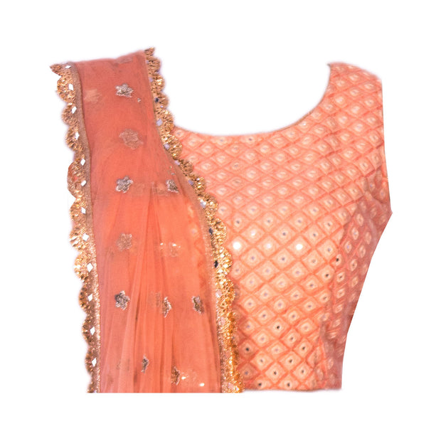 Peach Lehenga with Tulle Skirt