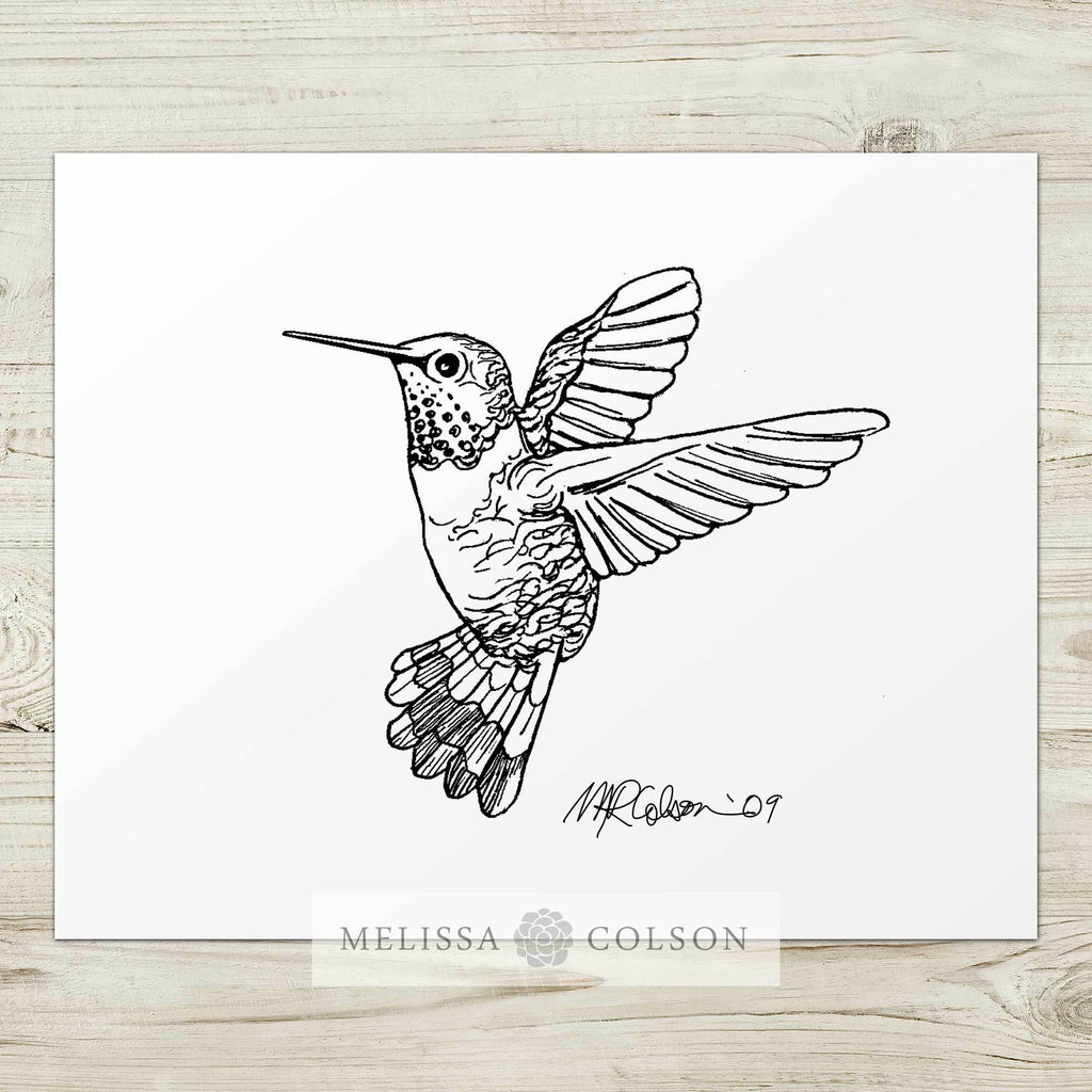 Hummingbird Pen and Ink Art Print - Melissa Colson