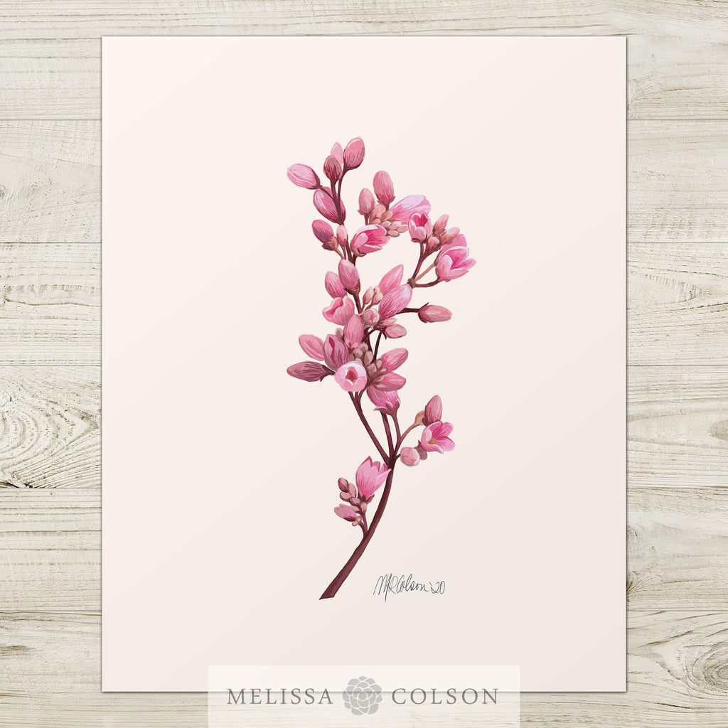 Petite Buds (2 of 2) Watercolor Giclée Art Print - Melissa Colson