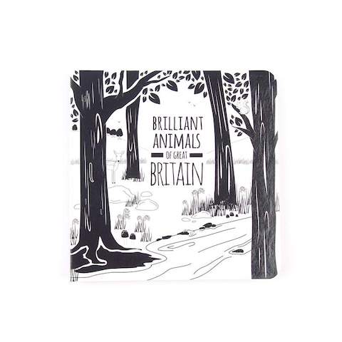 The Brilliant Animals of Great Britain, with the British Book by Black and White Book Project. Beautifully illustrated with countryside critters and farmyard favourites.
