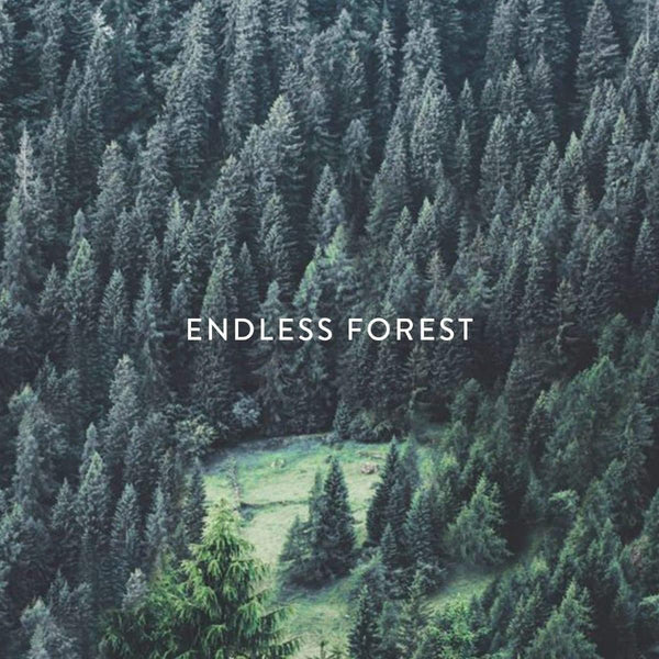 Endless Forest - Aloe & Seaweed Bar Soap-Soap Bar-MOTE-120g-Totem Store