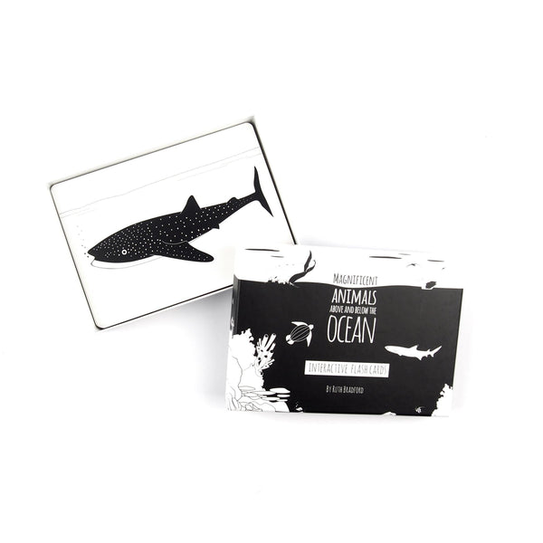 Ocean Animals - Flash Cards - Black & White Book Project - Totem Store