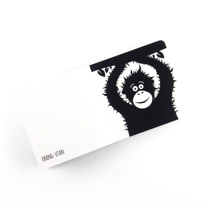 Southeast Asia Animals - Baby Book - Black & White Book Project - Totem Store