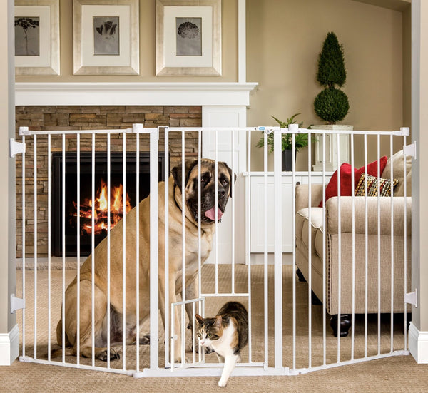 Extra tall pet gate with cat going through small opening and big dog nearby, for pet shop pet store, for you to buy pet supplies online or pet products.
