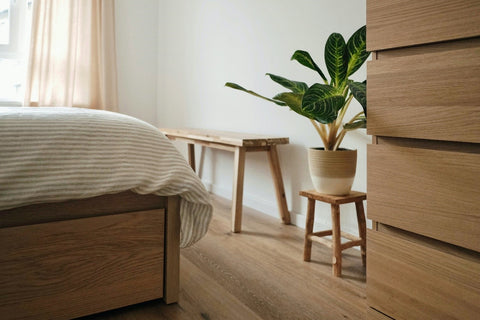House plants for bedroom