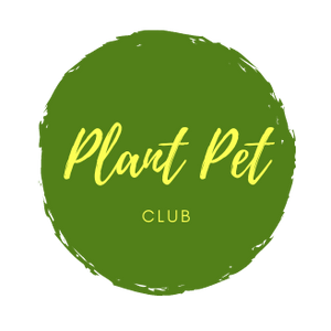 Houseplant Subscription Box