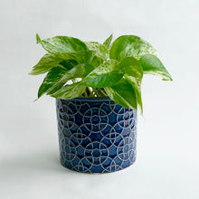 Load image into Gallery viewer, Poppy Royal Blue Cylinder Pot