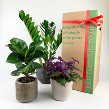 Load image into Gallery viewer, Plant Pet Subscription Offer - 3 Months