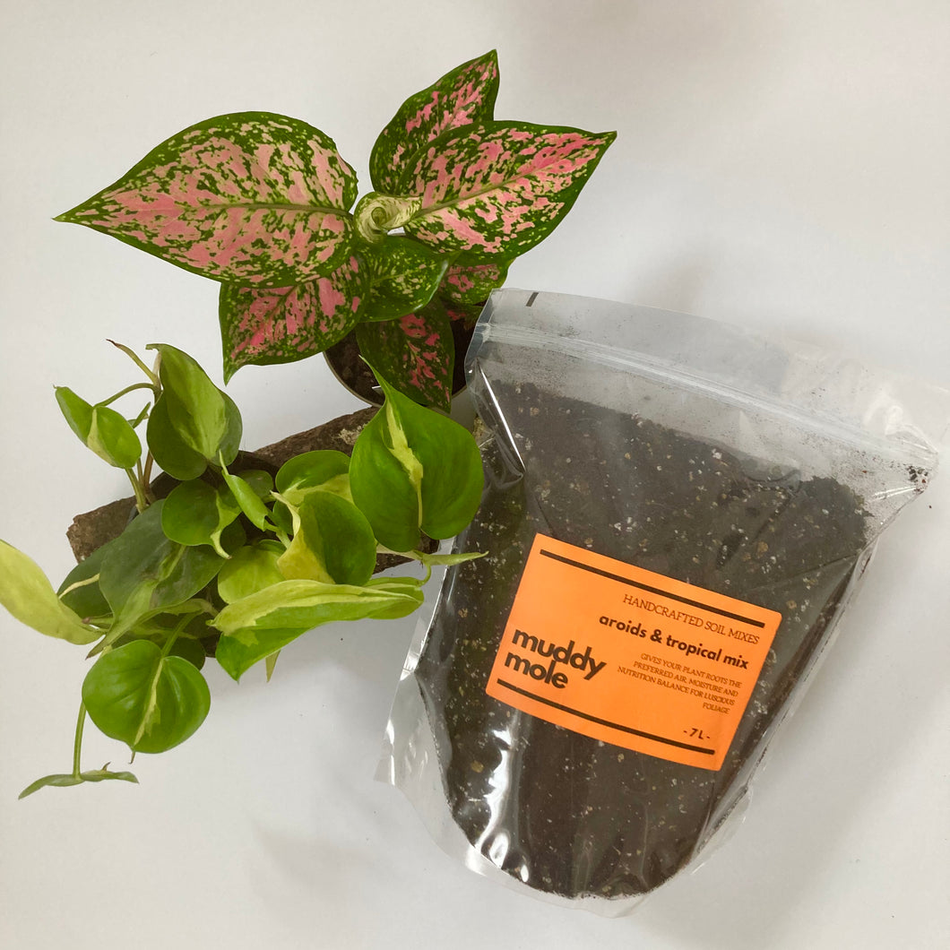 Aroid & Tropical Soil Mix