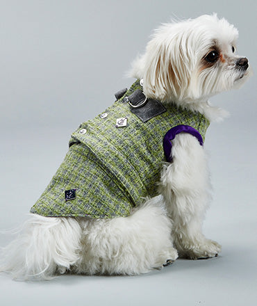 Notting Hill Waistcoat Harness with Tail - Hercabella