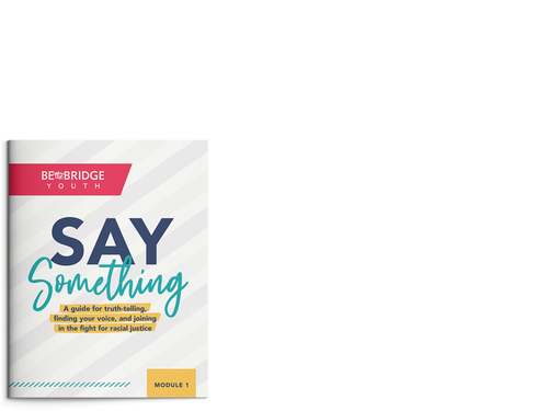 Say Something: A Guide for Truth-Telling, Finding Your Voice, and Joining in the Fight for Racial Justice