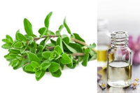 Marjoram (Essential Oil)