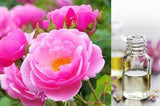 Rose (Essential Oil) 3% Dilution