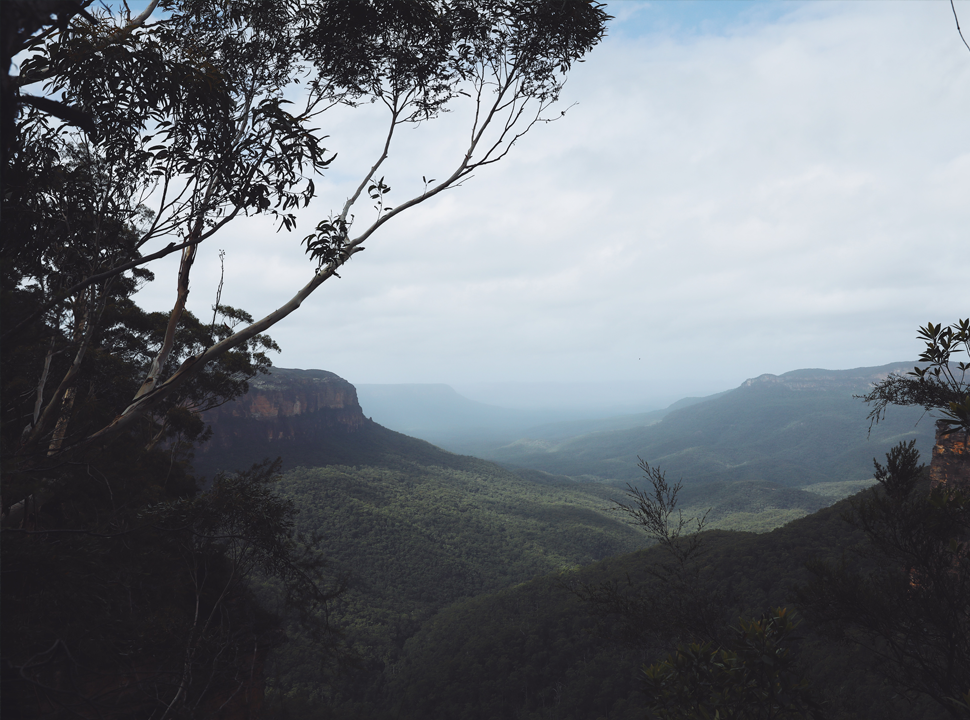 Australia's top 3 trail runs