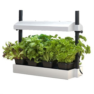 SunBlaster Growlight Micro Garden