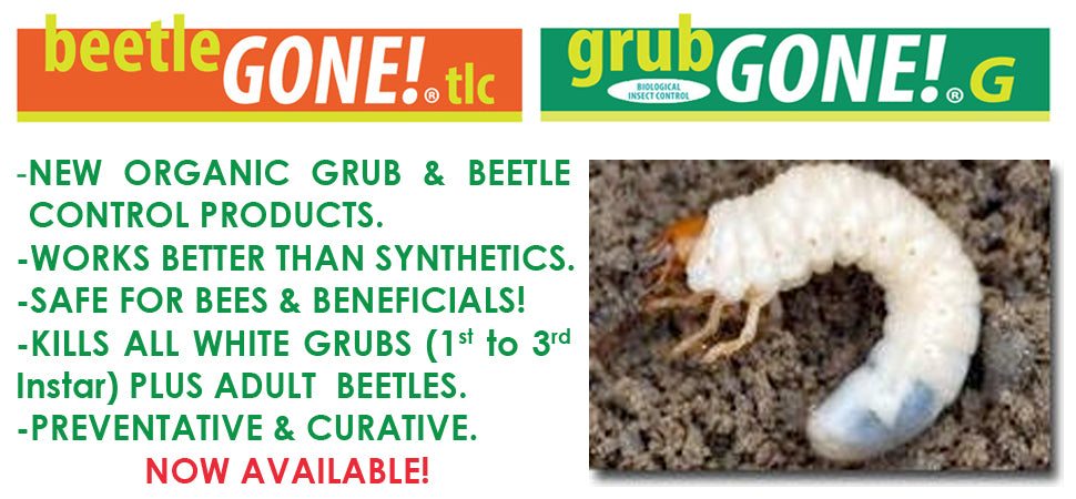 grubGONE! beetleGONE Organic Grub and Beetle Control