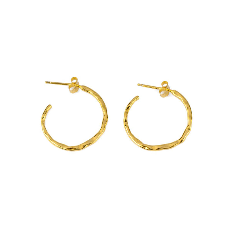 Treasure Trove Hoops Gold