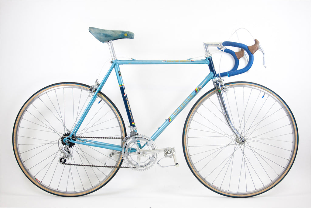53cm Gazelle Champion Monidal for L'Eroica Britannia