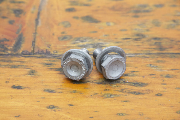 Campagnolo Crank/Bottom Bracket Bolts - Pedal Pedlar
