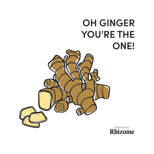 Oh Ginger, You're The ONE!