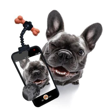 Dog Treat Selfie Stick