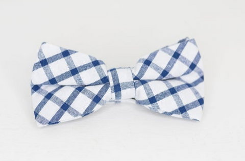 Navy and white bow tie