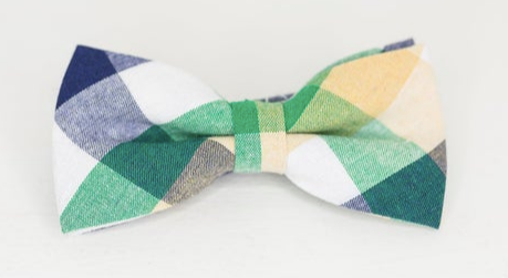 Green and blue bow tie