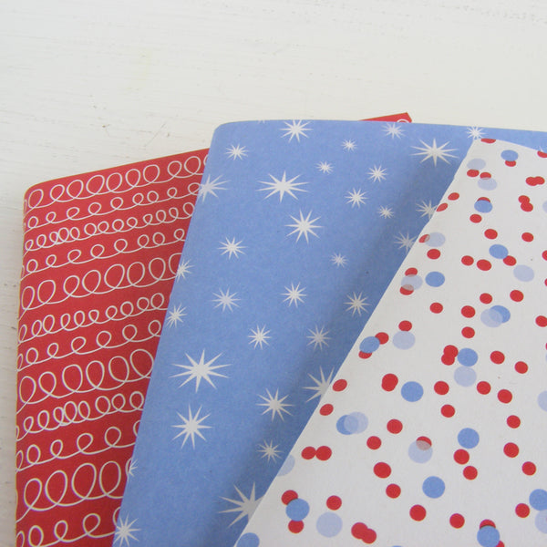 set of 3 pocket journals - celebrate in fire and ice