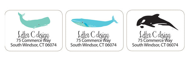 whale trio address labels